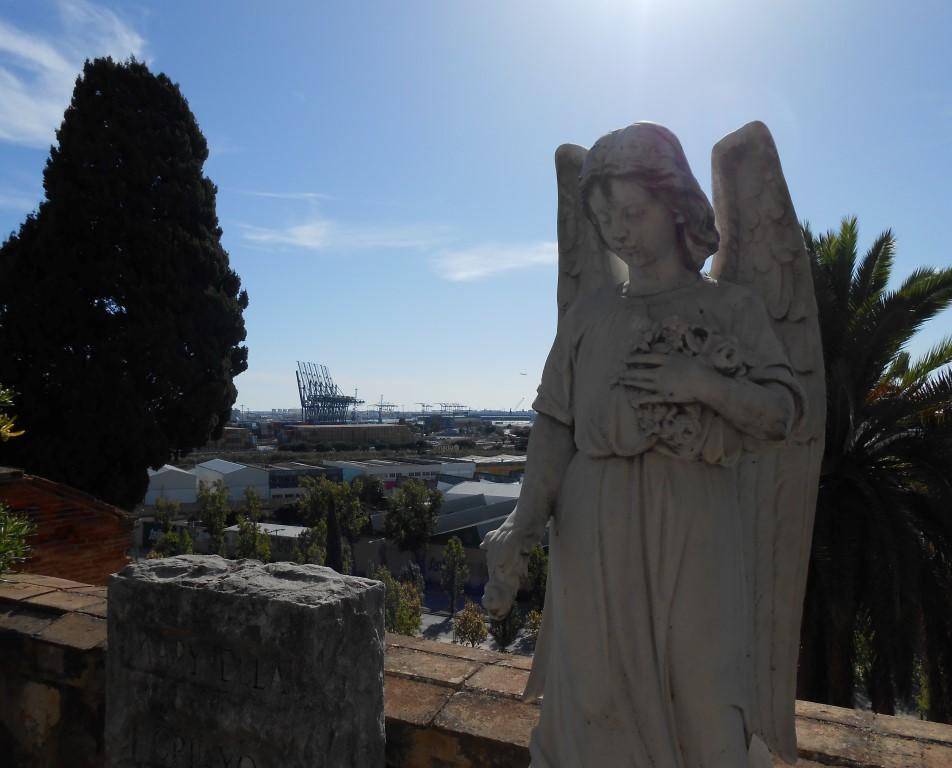 Widok z cmentarza na port